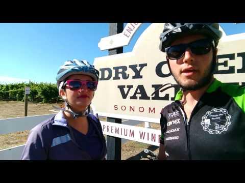Napa Valley de bicicleta: o pedal do vinho na Califórnia