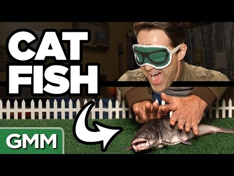 What Am I Petting? ft. Tony Hale (GAME)