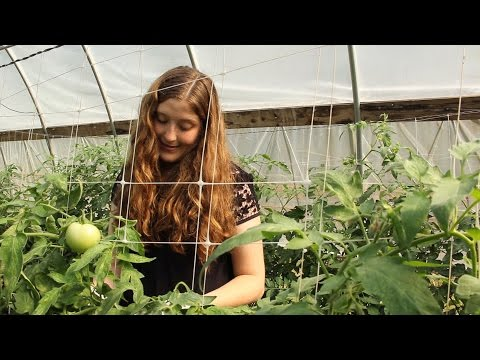My Plant Path: Graduate Student Lillian Garber