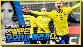 2018 러시아월드컵 분석 - 스웨덴편