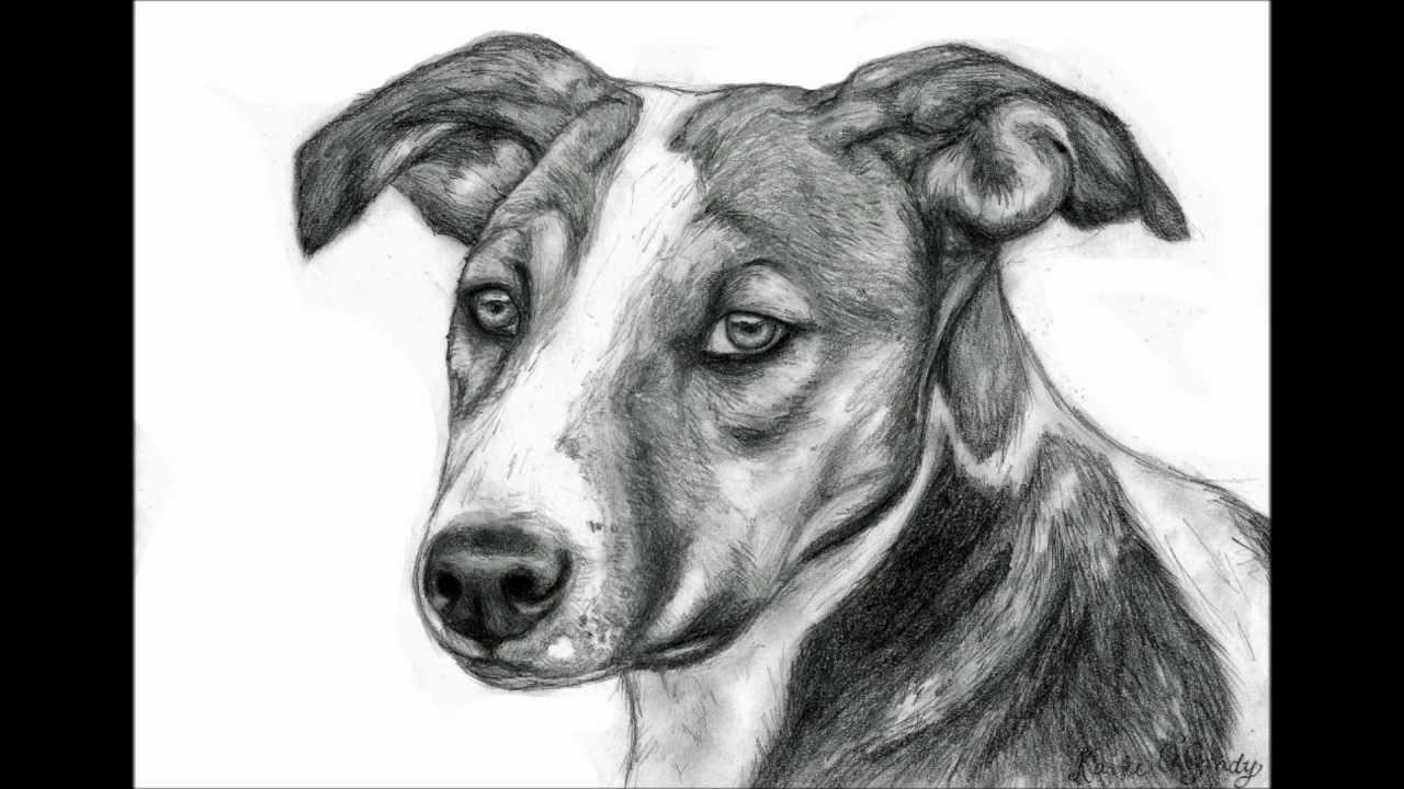 Visual art drawing painting youtube