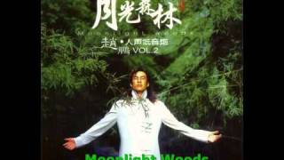 Download Moonlight Woods MP3 song and Music Video