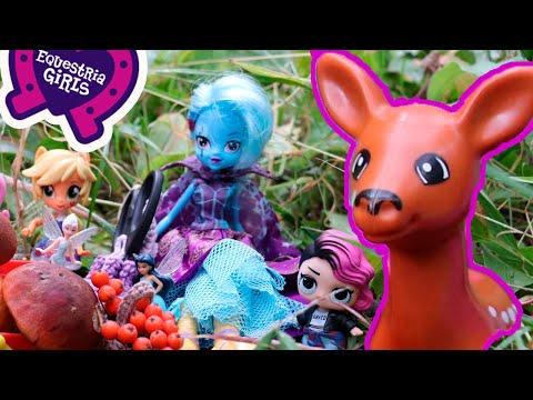 Куклы Лол и Эквестрии спасли оленёнка в лесу. Приключения Lol Dolls And Equestria Girls