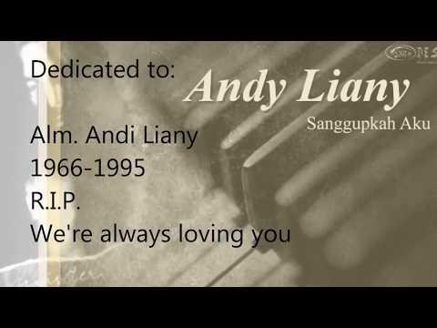 andy liany sanggupkah