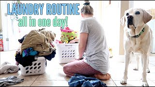 LAUNDRY ALL IN ONE DAY | LAUNDRY ROUTINE FOR FAMILY OF 5