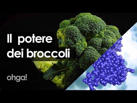 il-potere-dei-broccoli:-proprietà,-benefici-e-una-possibile-cura-per-combattere-il-cancro
