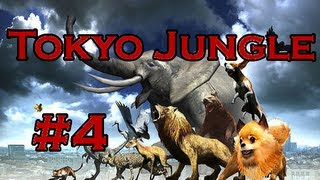 Tokyo Jungle Ep. 4 - Cat Territory Takeover! (Pomeranian | Survival)