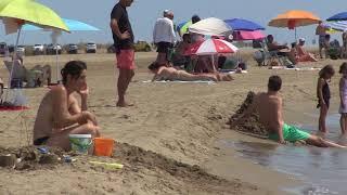 Amposta habilitarà una zona per a gossos a la platja d'Eucaliptus