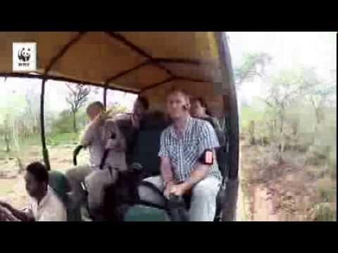 Elefantexpeditionen del 1: Välkommen till viltparadiset Selous