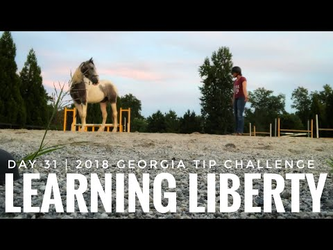 Day 31: 2018 Georgia Mustang TIP Challenge (First Liberty Training)