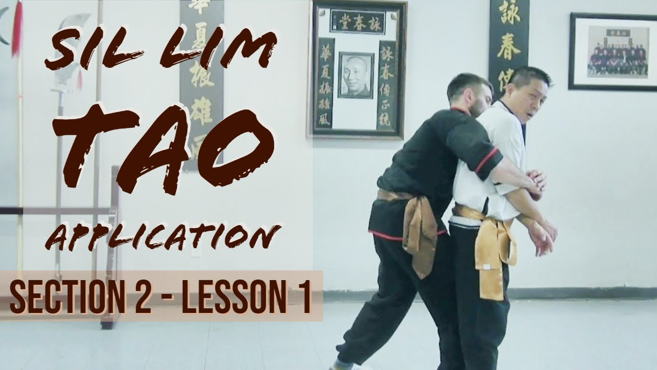 Sil Lim Tao Application - SECTION 2 - LESSON 1