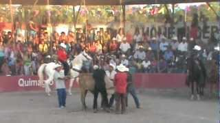 rodeo che rios ahome independencia