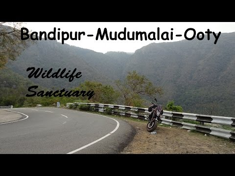 RIDING IN A TIGER RESERVE ON AN ER6N | Bandipur | Mudumalai | Masinagudi | Ooty