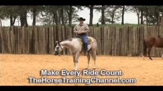 "Champion Horse Training Tip #31: ""If it"