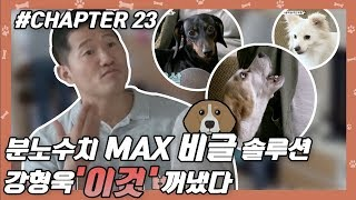 CHAPTER 23 | 강형욱, 분노수치 MAX 비글에 특단의 조치…'이것' 꺼냈다 #강형욱 #개통령 #개훈련사 [개는 훌륭하다]