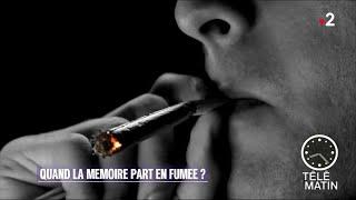 Santé - Arrêt du cannabis : la mémoire revient !