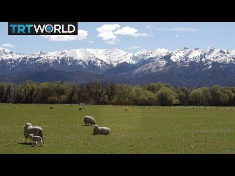 Agriculture heads discuss EU farm subsidy cuts   Money Talks