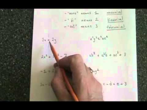 Worksheets Naming Polynomials Worksheet naming polynomials by degree worksheet intrepidpath polynomials