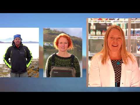 Jakta på Fakta: Havbruk - Teaser