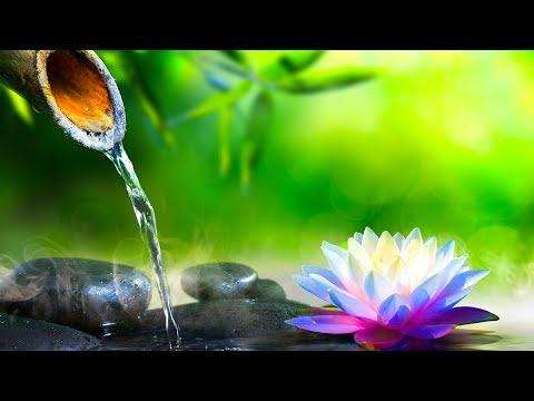 Relaxing  Meditation  Sleep  Reiki Healing  Yoga Relax Zen ☯1940