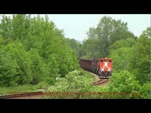 Thumbnail: CN Train With Herzog Cars Hits Animal 06-17-2011