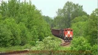 CN Train With Herzog Cars Hits Animal 06-17-2011