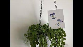Askartelu: Kesäinen kukkakortti
