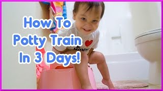 How To Potty Train In 3 Days - Potty Training Video