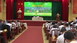 Thúc đẩy phát triển sản xuất, xuất khẩu trái cây tại Tiền Giang