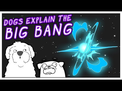 Two Dogs Explain the Big Bang | Animated Story