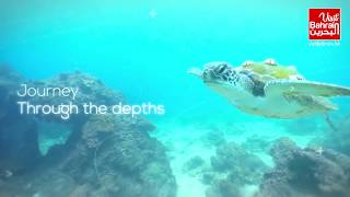 Pearl Diving Experience | Visit Bahrain