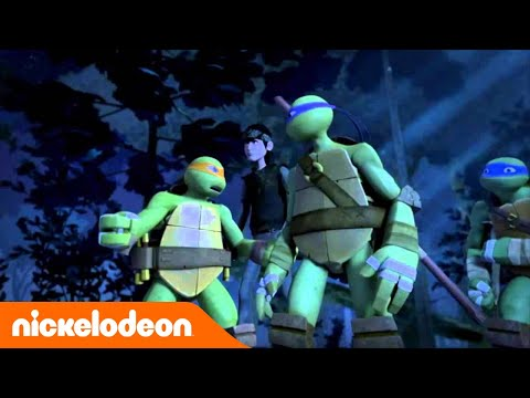 Les Tortues Ninja | L'amour | NICKELODEON