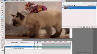 Редактирование видео в Adobe Photoshop(, 2015-03-20T14:49:50.000Z)