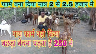 बिल्कुल सस्ता फार्म Prince Sirohi Goat Farm Kaimur