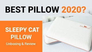 Best Pillow in India Sleepy Cat Pillow Unboxing amp Review in HIndi