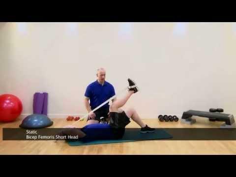 Hamstring Lying Bent Leg Biceps Femoris Short Head Stretch