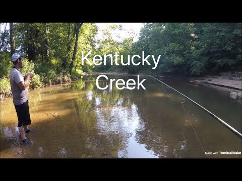 HUGE Smallmouth Bass At A Kentucky Creek!!