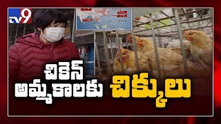 Coronavirus rumours hit sales of egg, chicken - TV9