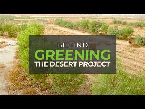 Behind Greening The Desert