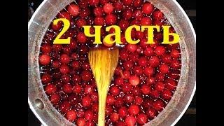 Как приготовить вино из клюквы (2 часть)