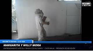 """Entrevista Margarita y Willy Mora - Emprendimiento """"Rayen Cochile Mapu"""" miel artesanal - Chos Malal"""