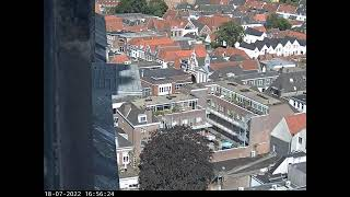 Preview of stream Falcon nest Amersfoort Onze outside view