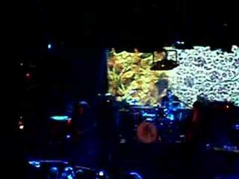 OK Go - Television, Television AMSTERDAM