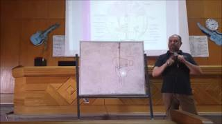 brain stem dr hegazy histology 4