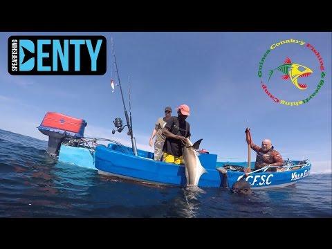 Chasse sous-marine en Guinée Conakry