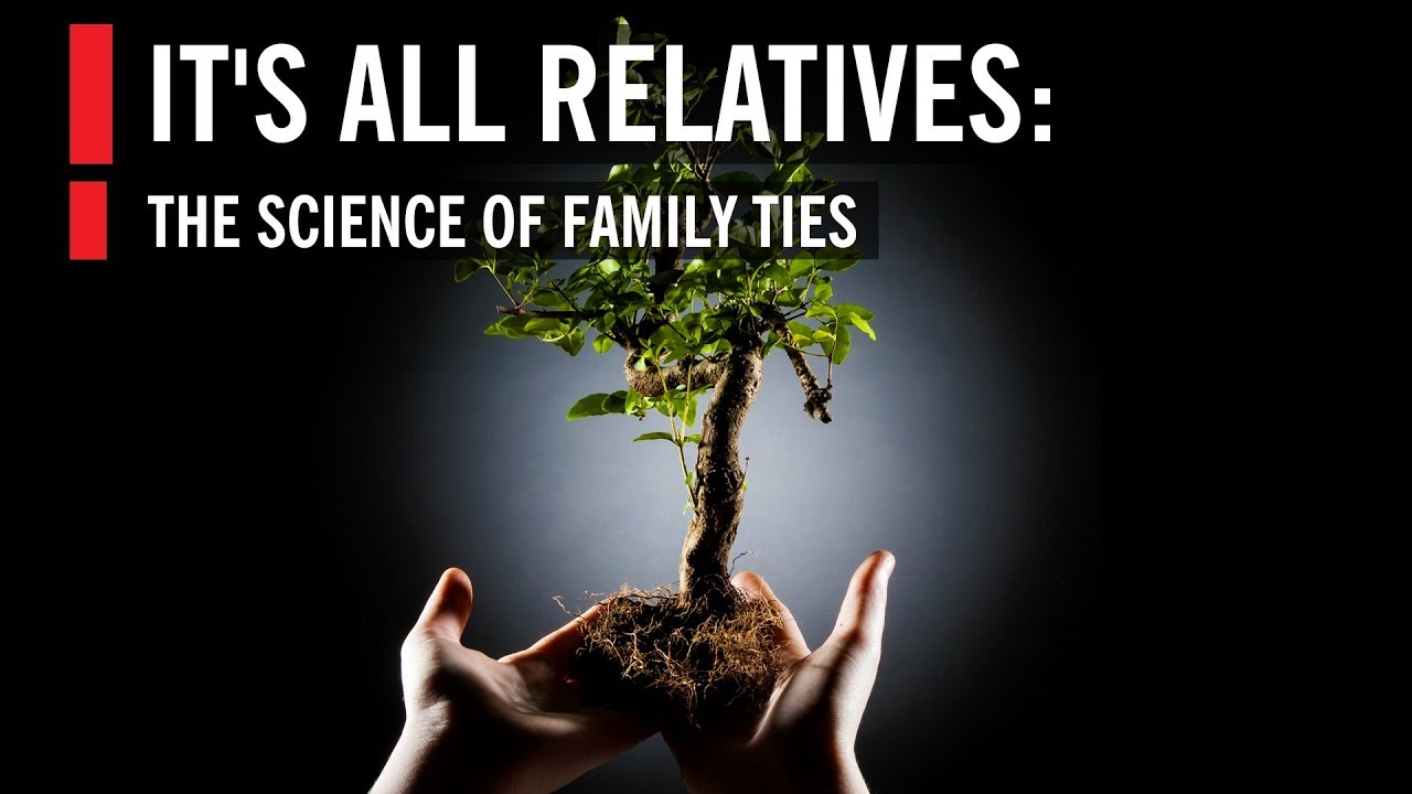 It's All Relatives: The Science Of Family Ties