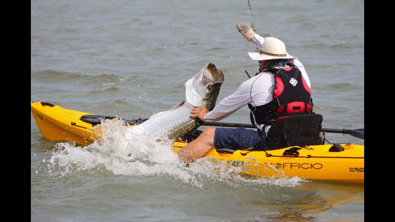 How To Catch And Release Tarpon From A Kayak Youtube