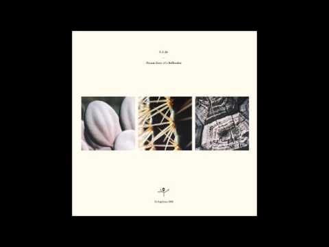 S.A.M. - Thank You / Dream State Of A Bellmaker / Big Sur [DELAPHINE008]