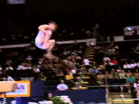Top 5 Should Have Been A 10 Vaults By American Gymnast