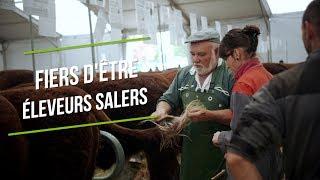 La race Salers au Sommet de l'élevage 2018